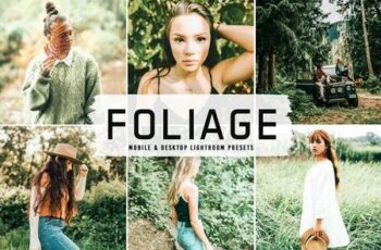 Foliage Pro Lightroom Presets 6481486 7
