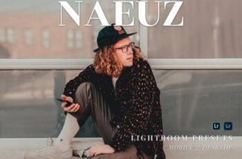 Naeuz Mobile and Desktop Lightroom Presets VUTT5YG 7