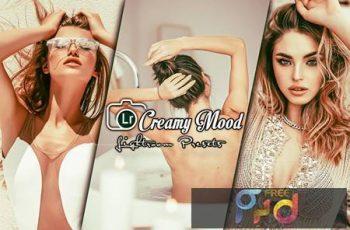 Creamy Portrait Lightroom Presets QHLFWGP 7
