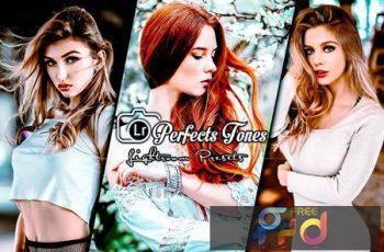 Perfects Tones Lightroom Presets RKGTQXL 3