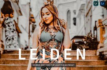 Leiden Lightroom Presets Dekstop and Mobile PBWFVX4 7